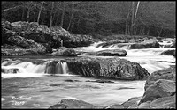 --- Little Pigeon River ---  January 29, 2011