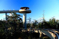 ---- Clingmans Dome ---- September 24, 2010